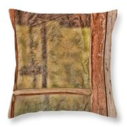 Vintage Diy Throw Pillow by Bonnie Bruno