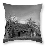 Vintage Farm House Throw Pillow