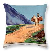 Vintage Ireland Travel Poster Throw Pillow