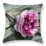 Vintage Pink English Rose And Peeling Paint Throw Pillow