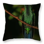 Violet-crowned Woodnymph Throw Pillow