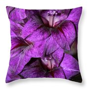 Violet Glads Throw Pillow