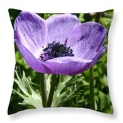Violet Peace Throw Pillow