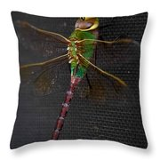Violet Tail Damsel Throw Pillow