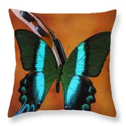 Violin With Green Black Butterfly Throw Pillow
