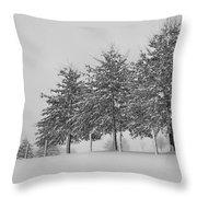 Virginia Snow Throw Pillow
