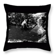 Virginia Water Throw Pillow