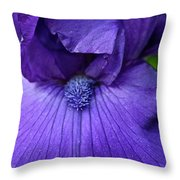 Vision In Violet Throw Pillow