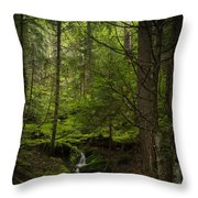 Vision Of Life Throw Pillow by Mike Reid