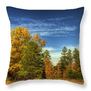 Visions Of Fall  Throw Pillow