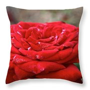 Viva Red Throw Pillow