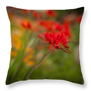 Vivid Points Throw Pillow
