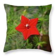 Vivid Star Throw Pillow