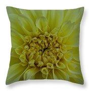 Vivid Yellow Dahlia Throw Pillow
