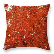 Vividly Sugar Maple Throw Pillow
