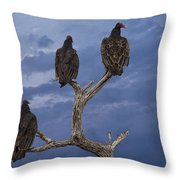 Vultures Perched On A Branch No.0022 Throw Pillow
