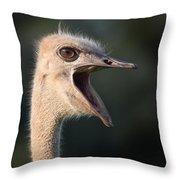W H A T  Throw Pillow