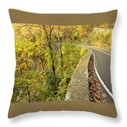 W Road In Autumn Throw Pillow