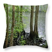 Waccamaw View II Throw Pillow