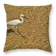 Wading For A Meal Throw Pillow