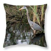 Wading Great Blue Heron Throw Pillow