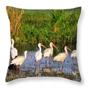 Wading Ibises Throw Pillow