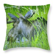 Wading In Throw Pillow