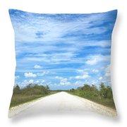 Wagon Wheel Road - 4 Throw Pillow