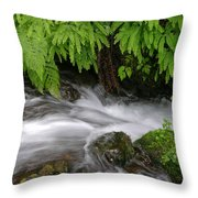 Wahkeena Falls One Throw Pillow