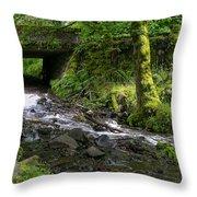 Wahkeena Falls Three Throw Pillow