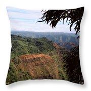 Waimea Canyon And Marshes Throw Pillow