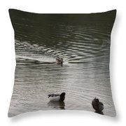 Wait For Meeeee Throw Pillow