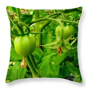 Waiting For The Harvest Throw Pillow