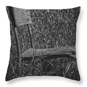 Waiting In The Wind Throw Pillow