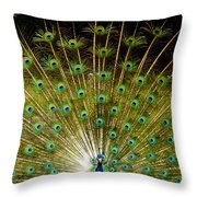 Waiting On A Line Of Blues And Greens Throw Pillow