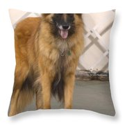 Waiting On You Throw Pillow