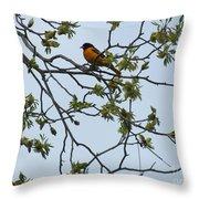 Waiting Throw Pillow by Randi Shenkman