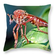 Waiting To Attack II Throw Pillow