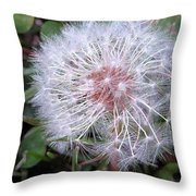 Waiting Wishes Throw Pillow