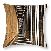 Walhalla Colonnade ... Throw Pillow