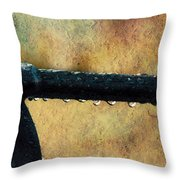 Walk Me Out In The Morning Dew Throw Pillow