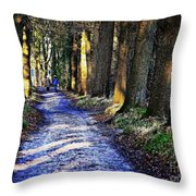 Walk On A Cold Autumn Day Throw Pillow