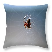Walkin In A Spider Web Throw Pillow