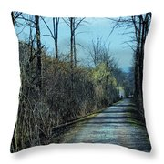 Walking In The Shadows Throw Pillow