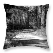 Walking In The Springtime Woods In Black And White Throw Pillow