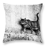 Walking On The Wall Throw Pillow
