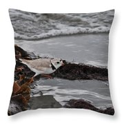 Walking The Beach Throw Pillow