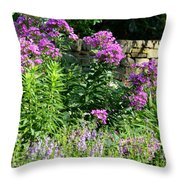 Wall Front Throw Pillow