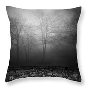 Wall Of Sisters  Throw Pillow