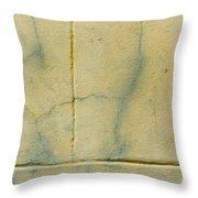 Wallspace Throw Pillow